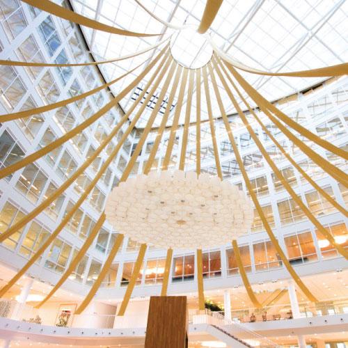 Donkergroen kerstboomservice maatwerk gespannen plafond lint